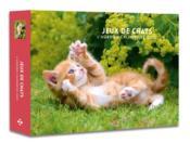 L'agenda-calendrier jeux de chats (édition 2020) - Couverture - Format classique