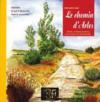 Regards sur le chemin d'Arles