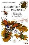 Coléoptères d'Europe, carabes, carabiques et dyptiques t.1 ; volume 1: adephaga