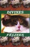 Divines Felines
